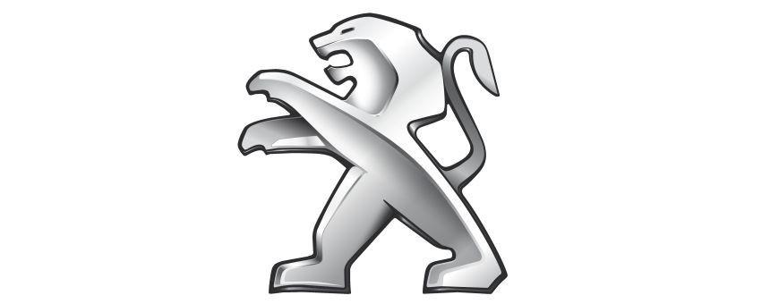 Blocaje distributie Peugeot